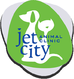 351: What Makes a Good Vet Tick? Dr. Erica Anderson, Jet City Animal Clinic