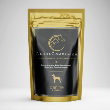 375: Canna Companion – The Therapeutic Benefits of Cannabis for Your Pet