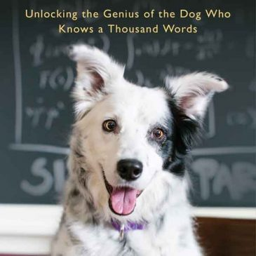 "409: ""Chaser: Unlocking the Genius of the Dog Who Knows a Thousand Words"""