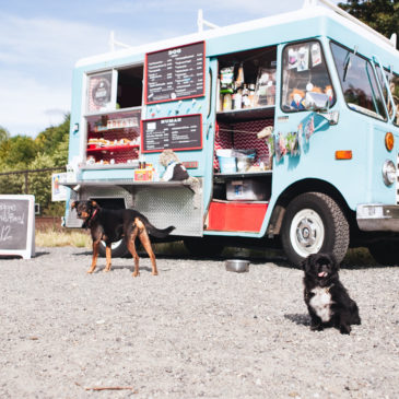 439: The Seattle Barkery: Homemade Doggie Treat Truck and more!
