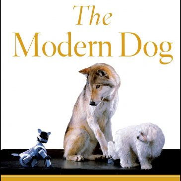 "139: ""The Modern Dog"" Author, Stanley Coren"
