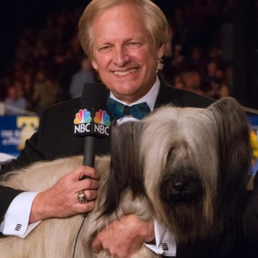 471: David Frei: Longtime Co-Host of Westminster Kennel Club Dog Show and National Dog Show.